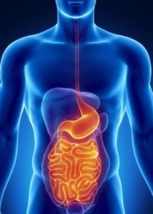 Остановить диарею в домашних условиях у взрослых